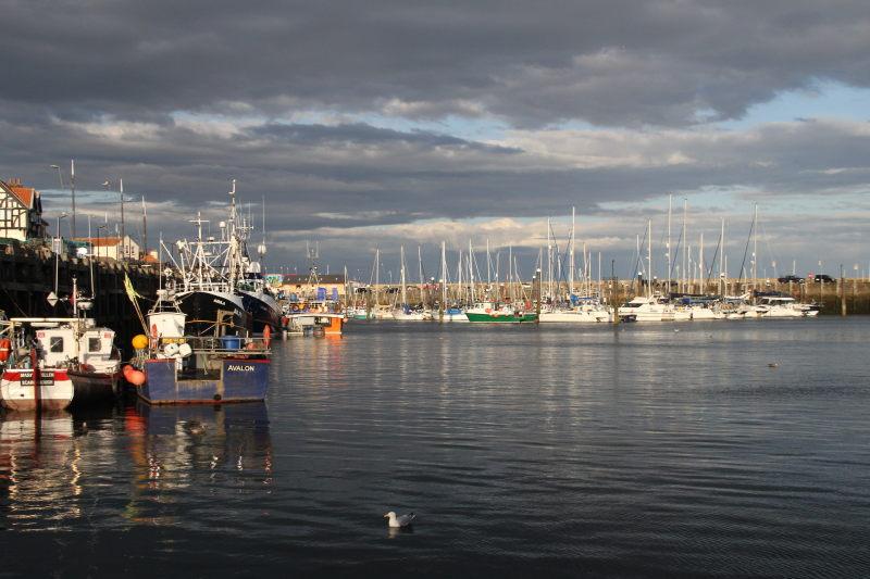 Scarborough Port